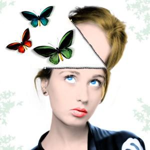 DSC_1607 mariposas